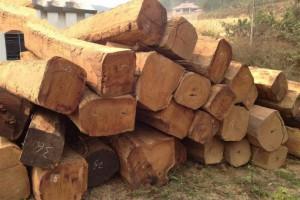 厂家直销 尼日利亚非花原木,刺猬紫檀大方价格实惠欢迎定制
