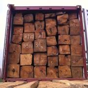 深圳市巴菲特尔贸易有限公司