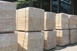芬兰国际针叶木材贸易将同时面临中欧风暴和甲虫灾难中断因素挑战