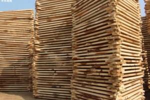 义乌市木材交易市场开业实现开门红,木材市场商位复工率82%