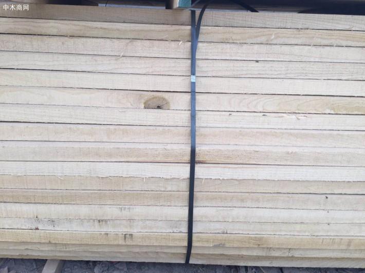 老榆木烘干板材今日最新报价