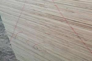 田园居漂白杨木面杨木芯整芯包装板胶合板