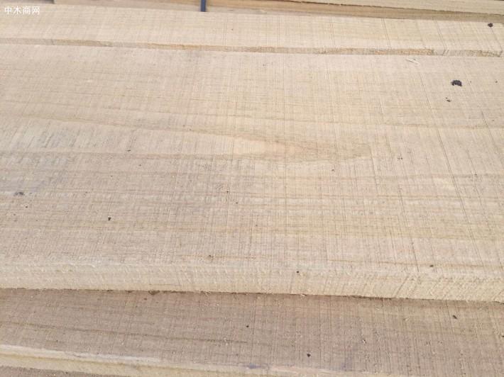 榆木板今日最新报价厂家