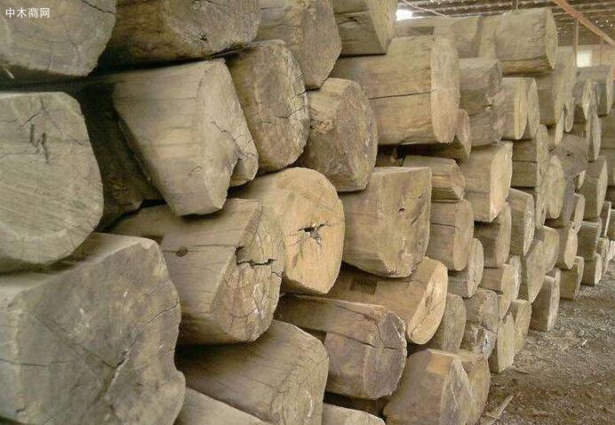 老榆木板材今日最新报价