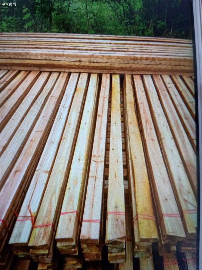 杉木木方,杉木锯材,杉木木条林场直供