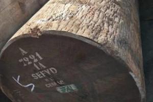 筒状非洲楝木原木