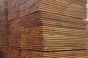 香椿木板材价格和香椿木烘干板价格多少钱一立方米