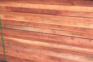 香椿木板材与香椿木烘干板高清图片