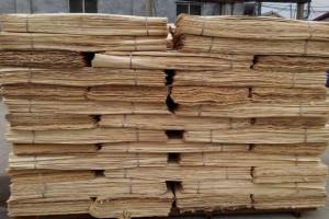 杨木皮,杨木单板木皮