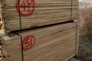 河南优质榆木家具烘干板材报价,榆木家具烘干板材批发