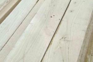 自产自销白椿木板材,白椿木烘干板材批发价格