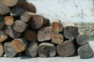 优质缅甸柚木原材料批发