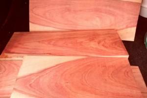 南美洲亚马逊花梨木原木大方料厂家直销