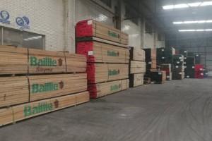 北美洲红橡木烘干板材厂家批发