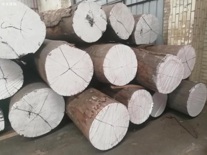 南美洲亚马逊花梨原木大方料厂家
