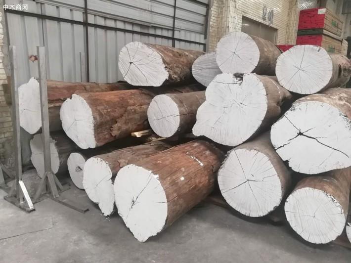 南美洲亚马逊花梨原木大方料批发