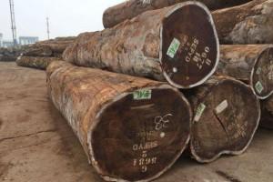 生产厂家批发非洲红花梨原木材各种规格均可定制加工