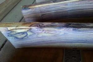 蓝底紫蝴蝶海黄原木板材