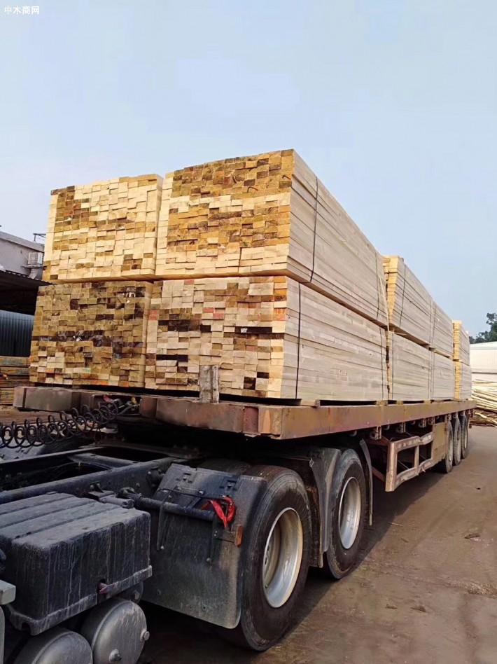 经营进口澳洲辐射松建筑木方,建筑模板厂家