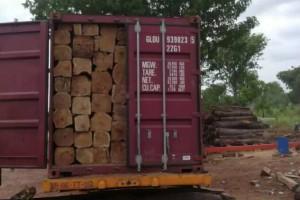 厂家直销亚花梨大方,进口亚花梨原木大量供应