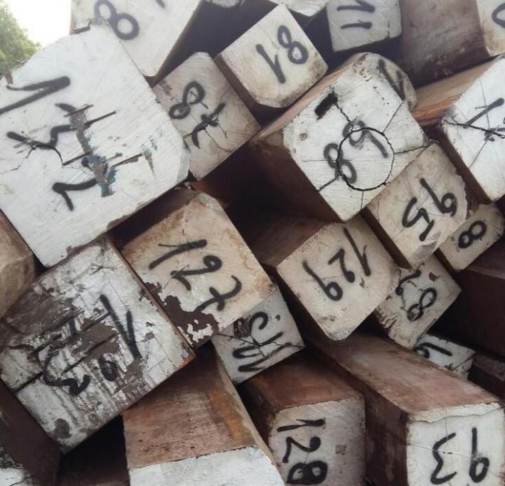 龙凤檀原木大方料,龙凤檀地板坯料厂家批发价格