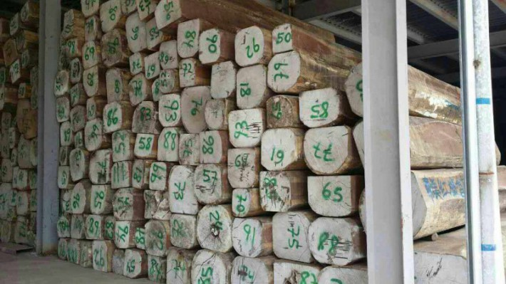 南美香花梨木原木大方厂家批发价格图片