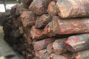 赞比亚血檀原木多少钱一吨