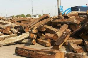 尼日利亚亚花梨原木原产地直供