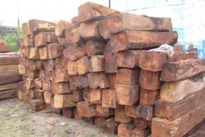 非洲黄花梨原木批发价格