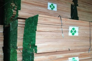 进口非洲奥古曼,巴花板材价格多少钱一立方米