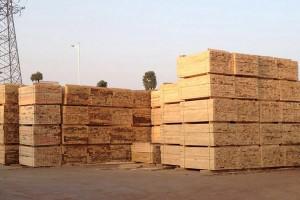 东莞市中福木业建筑木方高清图片
