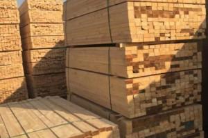 河北阳原县大队开展木材加工企业,家具生产企业消防安全专项检查