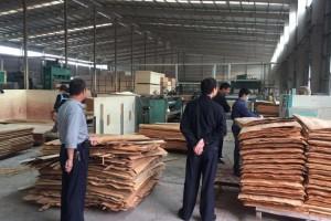 山东港口烟台港蓬莱港公司助力临港木材加工企业复工复产
