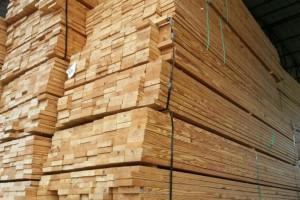 美国当地锯材价格多少钱一立方米_2020年3月27日