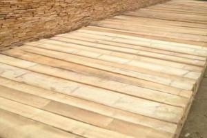 白杨木烘干板材2.6米长自然宽厂家直销