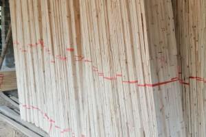 桂林保利木材加工厂香杉木直拼板板芯料高清图片