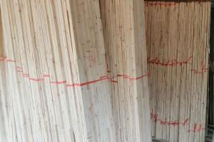 桂林保利木材加工厂香杉木拼板板芯料高清图片