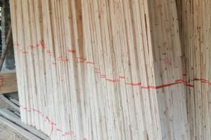 香杉木机拼板芯料价格多少钱一立方米