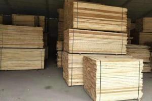 河南漯河:助力杨木木业产业绿色健康发展