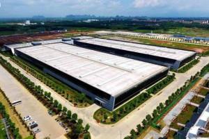 """广西贵港:""""7点工作法""""让木业项目建设提速"""