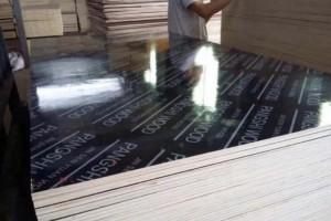 湖北南漳板材企业等13个生产项目集中签约