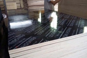 江苏庞氏集团建筑模板,塑面模板,覆膜板建筑模板高清图片