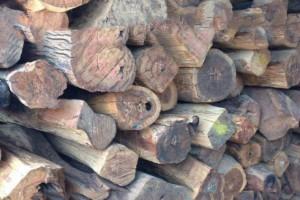 红木非洲崖豆木,奥氏黄檀原木价格多少钱一吨_2020年3月31日