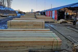 绥芬河口岸俄罗斯榆木原木,椴木板材价格多少钱一立方米_2020年4月2日