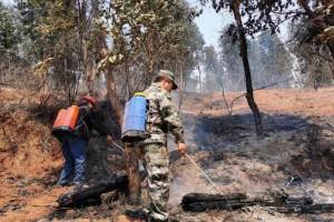 经过68个小时鏖战!西昌经久乡森林火灾明火终于被扑灭!