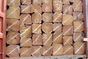 塞拉利昂刺猬紫檀原木一手货源厂家直销