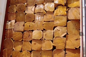 刺猬紫檀大方批发价格一手货源塞拉利昂弗里敦港发货