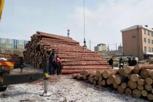 俄罗斯联邦工贸部提议将2020年远东森林木材出口关税配额增加1.5倍