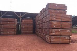 沙比利木板材价格多少钱一立方米_2020年4月8日