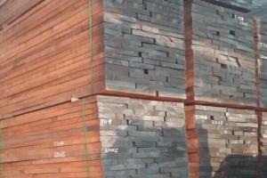 刚果布大量木材锯木厂处于停滞状态